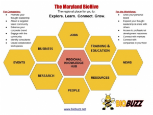 How the BioHive Can Help Increase Collaboration