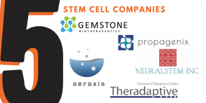 Top Five Stem Cell Companies to Watch in the BioHealth Capital Region
