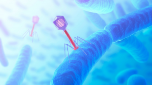Is Maryland Becoming a Hub for Bacteriophage Technologies?